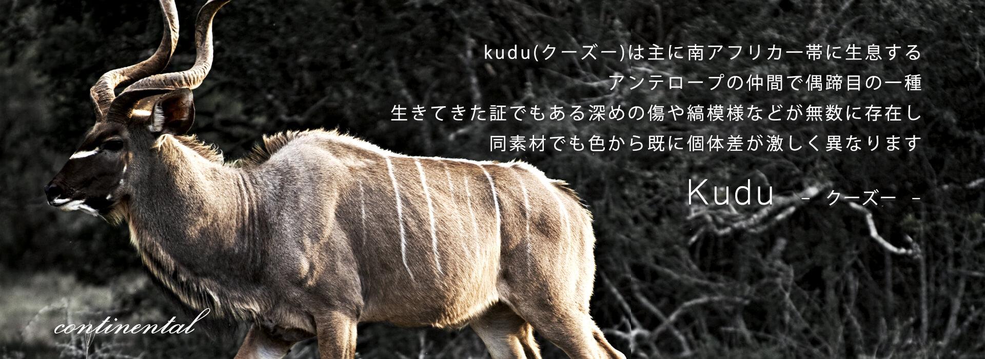 continental_kudu